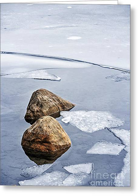 Ice Greeting Cards - Icy shore in winter Greeting Card by Elena Elisseeva