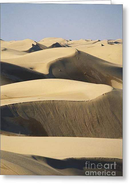 Californian Greeting Cards - Imperial Dunes, California Greeting Card by Mark Newman
