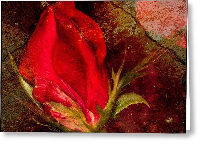 Dave Bosse Greeting Cards - Impressionistic Rose Greeting Card by Dave Bosse