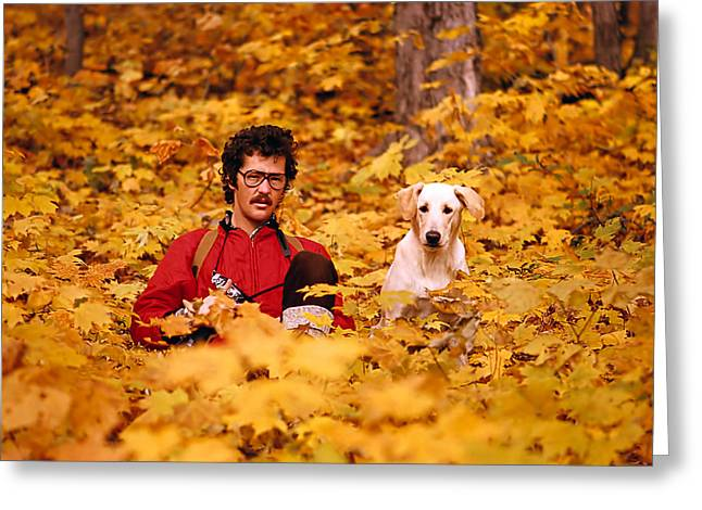 Dog Photo Greeting Cards - In a Yellow Wood Greeting Card by Steve Harrington