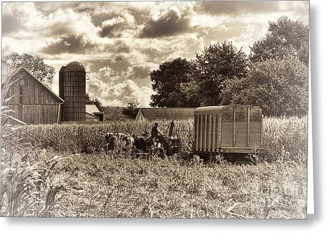Corn Picker Greeting Cards - In the Corn Greeting Card by David Arment