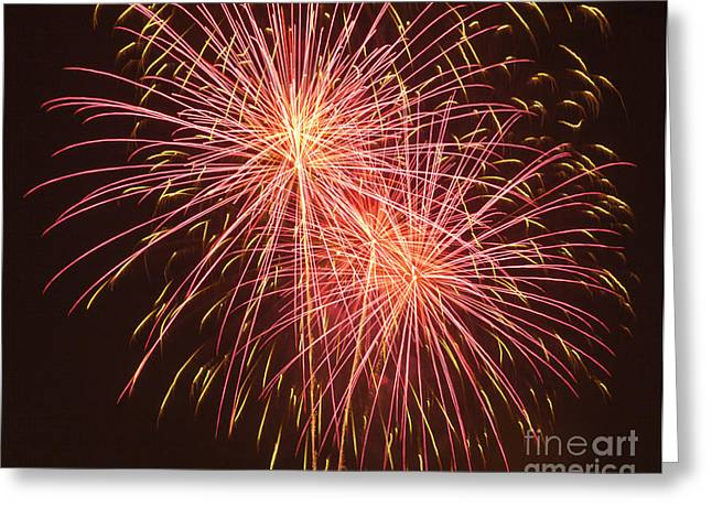 Independence Day Fireworks Greeting Card by Philip Pound