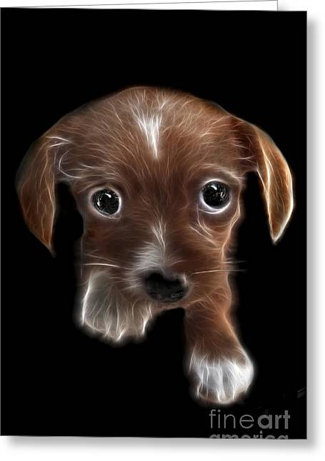 Soft Puppy Greeting Cards - Innocent Loving Eyes	 Greeting Card by Peter Piatt
