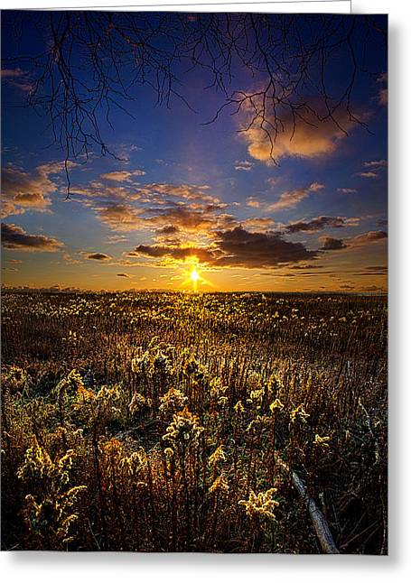 Geographic Greeting Cards - Interlude Greeting Card by Phil Koch