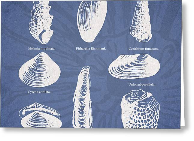 Seashell Digital Greeting Cards - Invertebrates Greeting Card by Aged Pixel