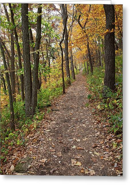 Iowa, Effigy Mounds National Monument Greeting Card by Jamie and Judy Wild