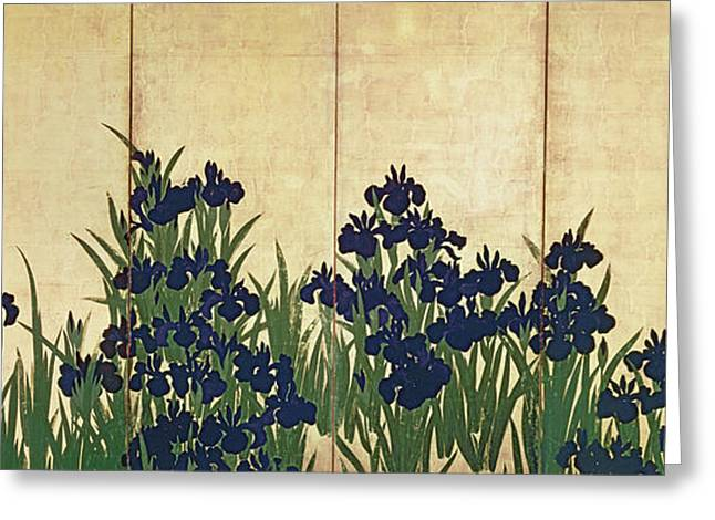 Period Greeting Cards - Irises Greeting Card by Ogata Korin
