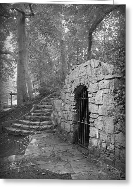 Sc Greeting Cards - Iron Door in a Garden Greeting Card by Kelly Hazel