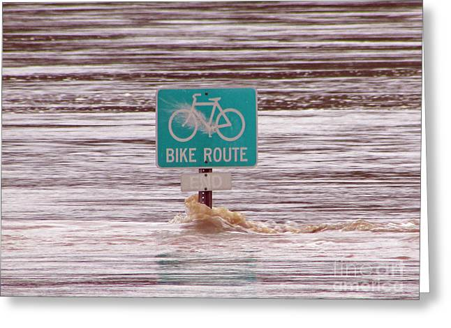 River Flooding Greeting Cards - Ironic Street Sign  Greeting Card by Jamie  Smith