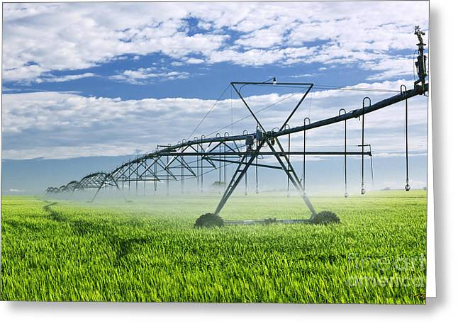 Prairies Greeting Cards - Irrigation equipment on farm field Greeting Card by Elena Elisseeva