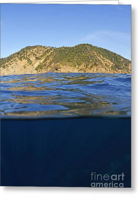 Port Cros Greeting Cards - Island and water surface Greeting Card by Sami Sarkis