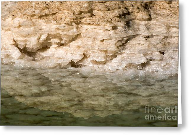 Dead Sea Greeting Cards - Israel Dead Sea  Greeting Card by Eyal Bartov