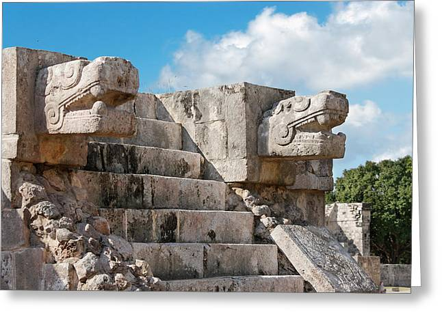 Mayan Jaguar Greeting Cards - Jaguars and Eagles Greeting Card by Jo Ann Snover