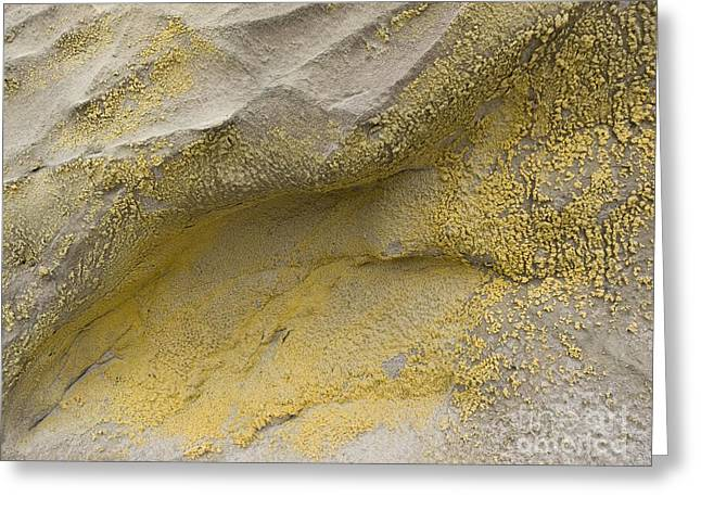 Chemical Compound Greeting Cards - Jarosite On Rock Greeting Card by Adrian Bicker