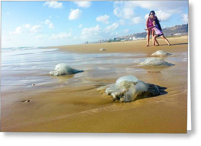 Jellyfish On The Beach Greeting Card by Photostock-israel