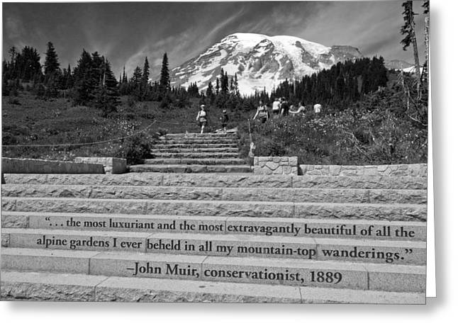 Green Day Greeting Cards - John Muir Quote at Mt Rainier Greeting Card by Bob Noble Photography
