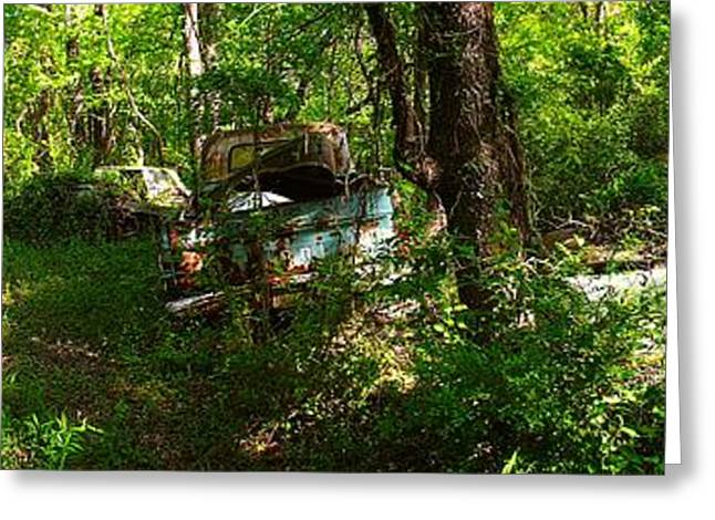 Rusted Cars Greeting Cards - Junk Yard Jungle Greeting Card by Richard Erickson
