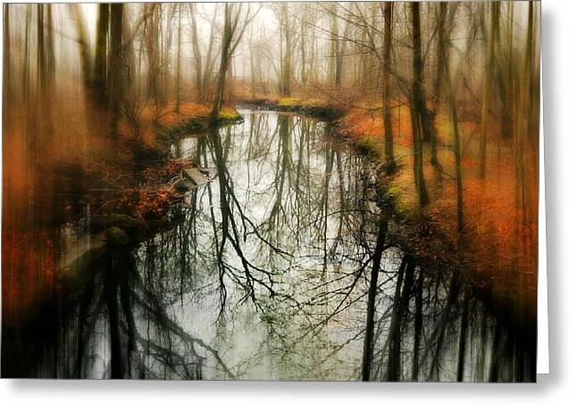 Nature Center Pond Greeting Cards - Just One Wish Greeting Card by Diana Angstadt
