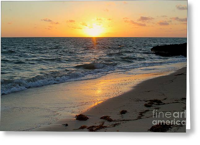 Diving Greeting Cards - Kamalame Beach Greeting Card by Carey Chen