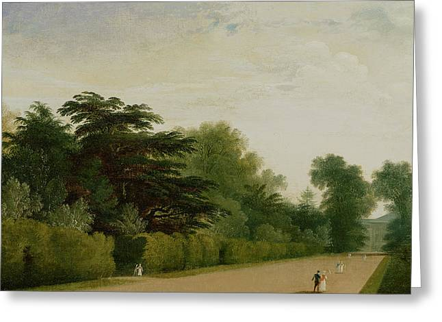 Tree Lines Greeting Cards - Kensington Gardens Greeting Card by John Martin