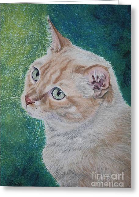 Stripes Pastels Greeting Cards - Kiko Greeting Card by Linda Eversole