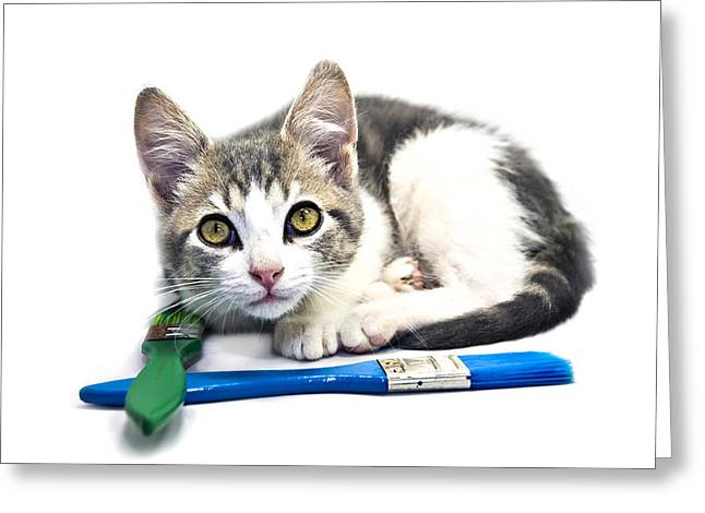 Susan Leggett Greeting Cards - Kitten with Paint Brushes Greeting Card by Susan Leggett