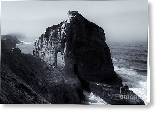 Cape Photographs Greeting Cards - Kiwanda Mist Greeting Card by Mike  Dawson