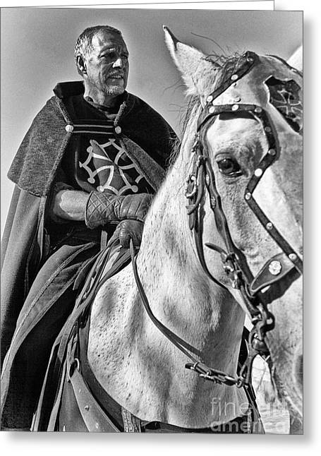 Historical Re-enactments Greeting Cards - Knight  Greeting Card by Jose Elias - Sofia Pereira