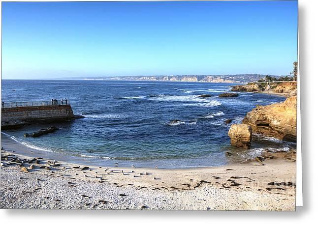 California Sea Lions Greeting Cards - La Jolla Shores Greeting Card by Eddie Yerkish
