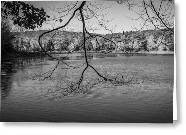 Fallen Leaf Lake Greeting Cards - Lake Ames Rockaway Township NJ Painted BW Greeting Card by Rich Franco