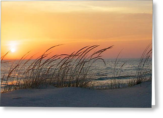 Best Seller Greeting Cards - Lake Michigan Sunset Panorama Greeting Card by Mary Lee Dereske