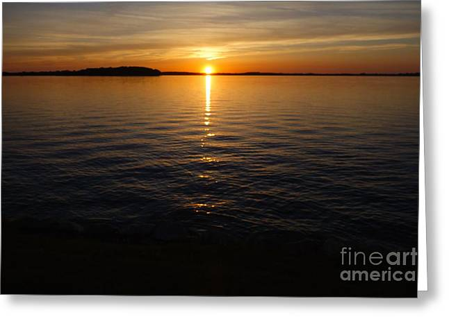 Pulsing Greeting Cards - Lake Waconia Regional Park Sunset  Greeting Card by Jacqueline Athmann