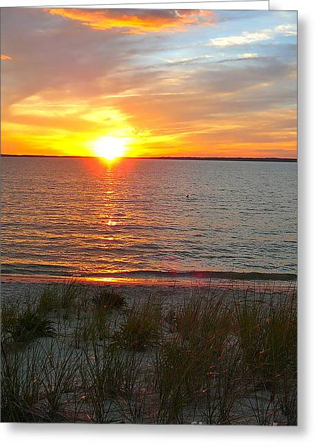 Recently Sold -  - Oak Creek Greeting Cards - Lamberts Cove Sunset Greeting Card by Matt Dana