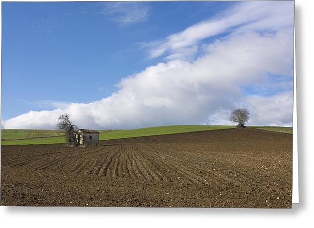 Recently Sold -  - Farmer