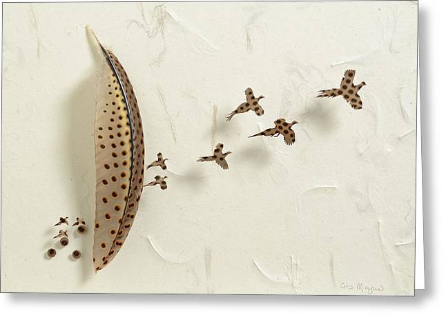 Flying Reliefs Greeting Cards - Launch Greeting Card by Chris Maynard