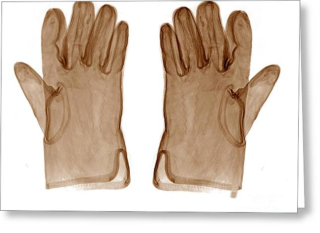 Apparel Greeting Cards - Leather Gloves X-ray Greeting Card by Bert Myers
