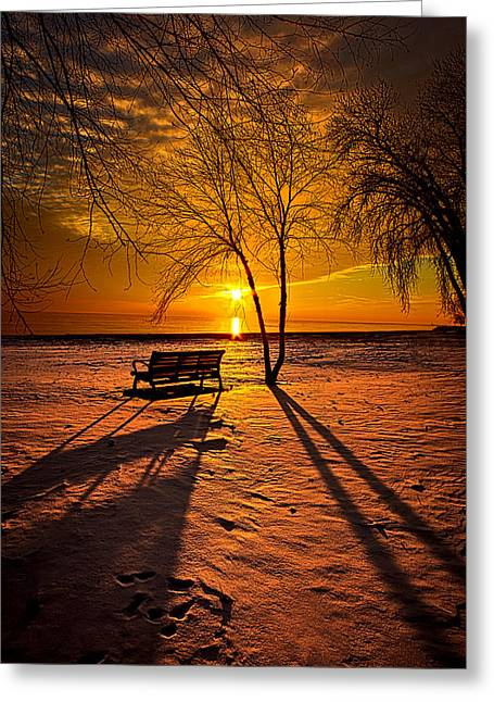 Park Benches Photographs Greeting Cards - Left Behind Greeting Card by Phil Koch