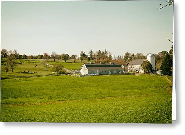 Fall Grass Greeting Cards - Life on the Farm - Connecticut Greeting Card by Mountain Dreams