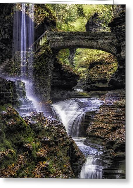Ithaca Greeting Cards - Lifes Path Greeting Card by Karen Celella