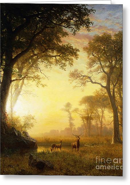 Outdoor Paintings Greeting Cards - Light in the Forest Greeting Card by Albert Bierstadt