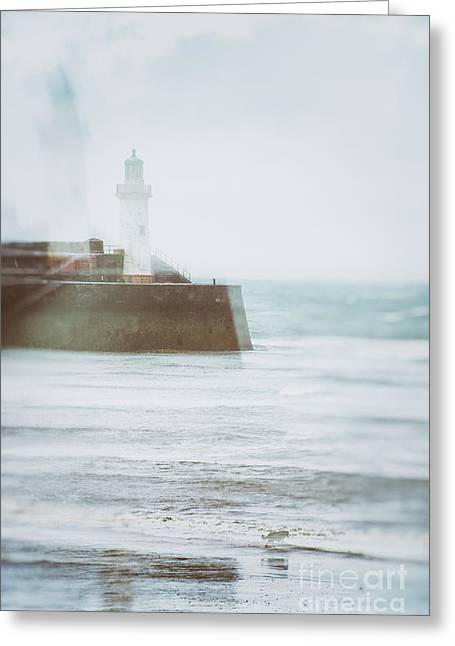 Dog Walking Greeting Cards - Lighthouse Greeting Card by Amanda And Christopher Elwell