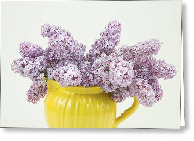 Flower Still Life Greeting Cards - Lilac Boquet - Yellow Vase Greeting Card by Keith Webber Jr