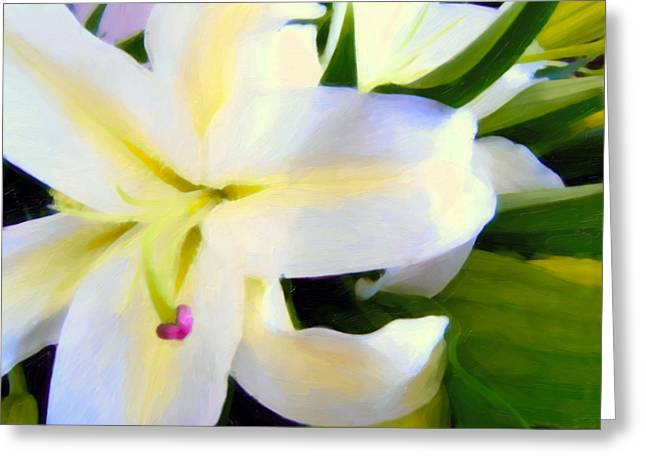 Zeana Romanovna Greeting Cards - Lily Portrait Greeting Card by Georgiana Romanovna
