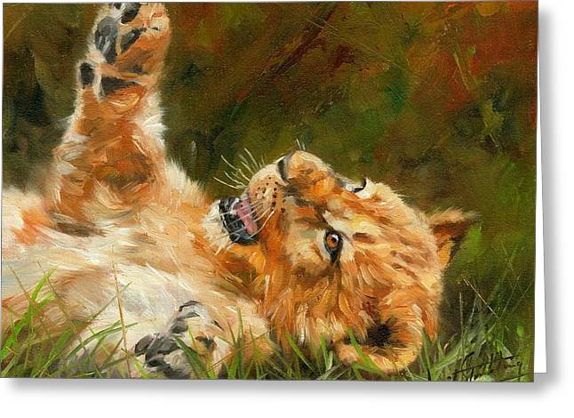Lions Greeting Cards - Lion Cub Greeting Card by David Stribbling