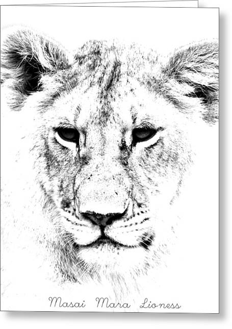Aidan Moran Photography Greeting Cards - Lion Portrait Greeting Card by Aidan Moran