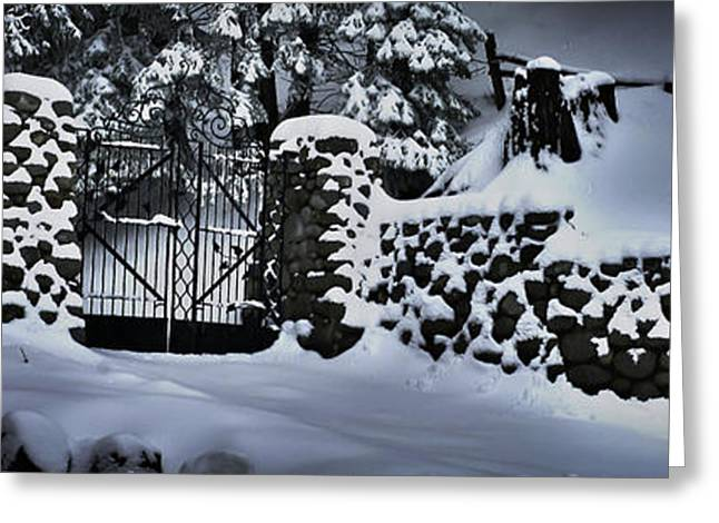 Big Chill Greeting Cards - Lions Gate Greeting Card by Van Schipper