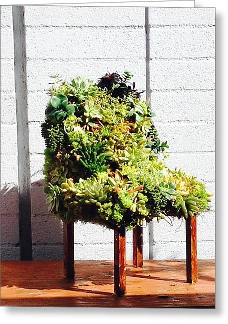Garden Sculptures Greeting Cards - livingART succulents chair Greeting Card by ARTSHOP los angeles  By Ulrik Neumann