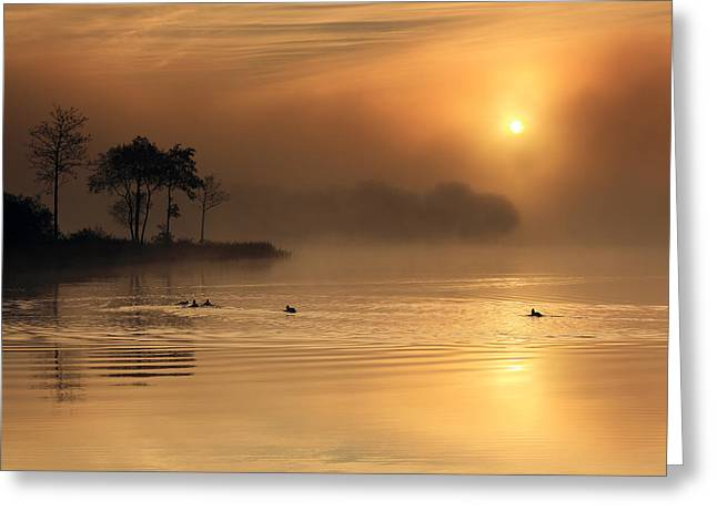 Scottish Scenic Greeting Cards - Loch Ard morning glow Greeting Card by Grant Glendinning