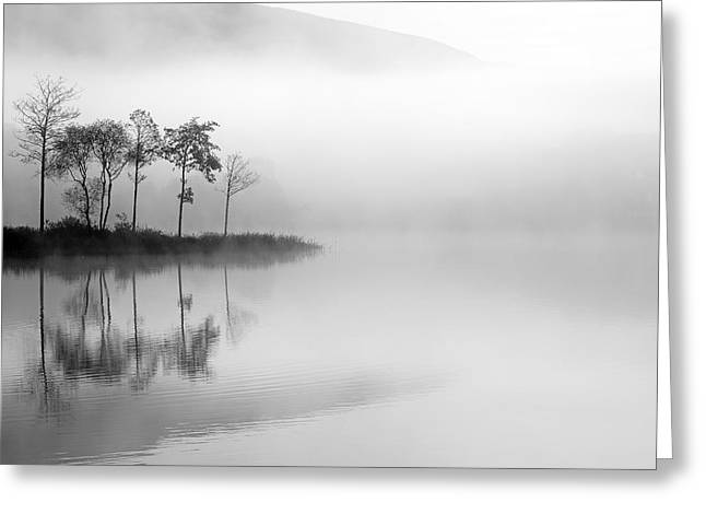 Scottish Scenic Greeting Cards - Loch Ard trees in the mist Greeting Card by Grant Glendinning