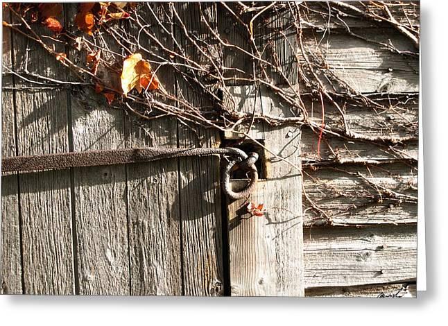 Grape Vines Digital Art Greeting Cards - Locked Spirit 2 Greeting Card by Jeanette Charlebois
